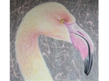Flamingo Project-min Featured Art of Week