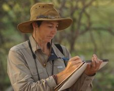 Alison Nicholls | Wildlife painting | Mishkalo