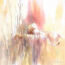 Alison Nichols | Nature Painting | Mishkalo