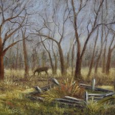 The Lone Deer | Elegant bridal shower gift | Bridal Registry for Art