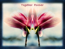 Together And Forever | Classy marriage registry | Wedding Registry for Art