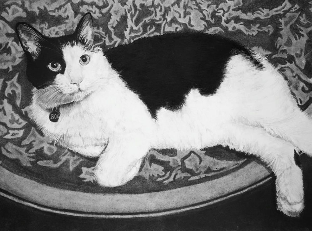 Boo The Rescue Cat | Novel marriage portrait | Bridal Registry for Art